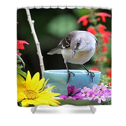 Mockingbird And Teacup Photo Shower Curtain