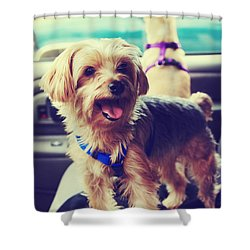Molly's Road Trip Shower Curtain by Laurie Search