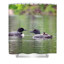 Mom And Dad Loon With Baby On Back Shower Curtain