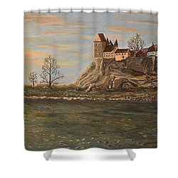 Moments Shower Curtain by Felicia Tica