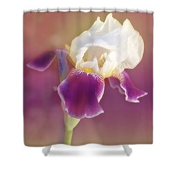 Moments In Time- Vivid Memories Shower Curtain