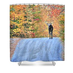 Moments That Take Our Breath Away - No Text Shower Curtain by Shelley Neff