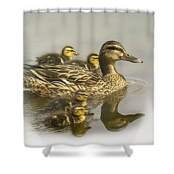 Momma And Babies Shower Curtain