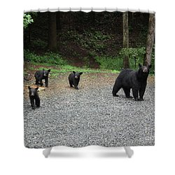 Shower Curtain featuring the photograph Momma And Three Bears by Jan Dappen