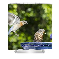 Moms Coming Shower Curtain by Jean Noren