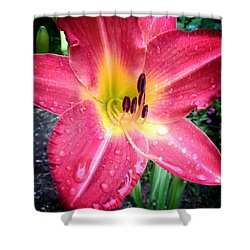 Mom's Secret Garden Shower Curtain