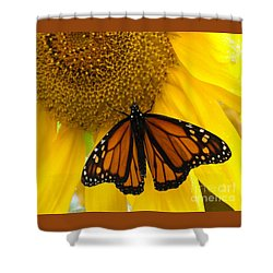 Monarch And Sunflower Shower Curtain by Ann Horn