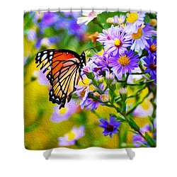 Monarch Butterfly 4 Shower Curtain