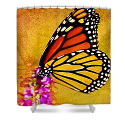 Monarch Butterfly Color Splash Sunset Shower Curtain