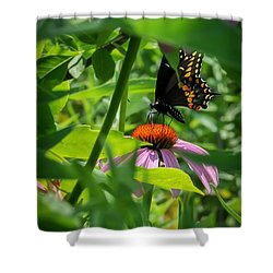 Monarch Butterfly Deep In The Jungle Shower Curtain