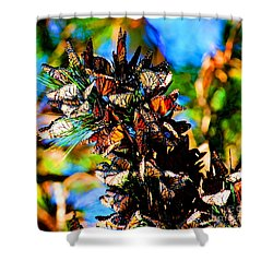 Monarch Butterfly Migration Shower Curtain by Tap On Photo