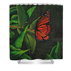 Viceroy Butterfly Oil Painting Shower Curtain