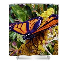 Monarch On Yarrow Shower Curtain
