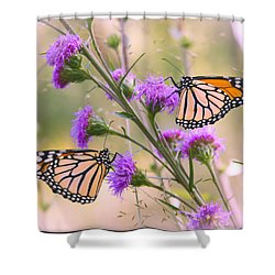 Monarch Pair Shower Curtain