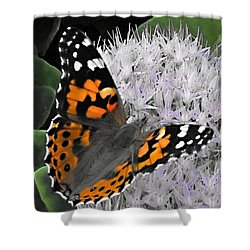 Shower Curtain featuring the photograph Monarch by Photographic Arts And Design Studio