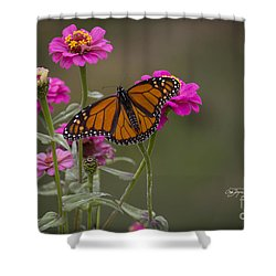 Monarch Pit Stop Shower Curtain