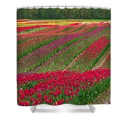 Monet Alive Shower Curtain