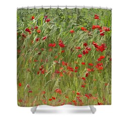 Monet Poppies IIi Shower Curtain