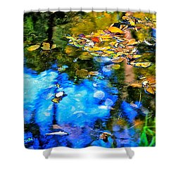 Shower Curtain featuring the photograph Monet's Garden by Ira Shander