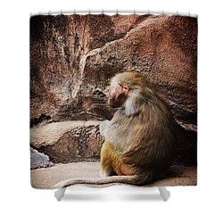 Monkey Business Shower Curtain by Karol Livote