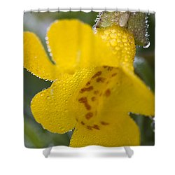 Shower Curtain featuring the photograph Monkey In Yellow by Sonya Lang