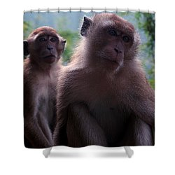 Monkey's Attention Shower Curtain by Kaleidoscopik Photography