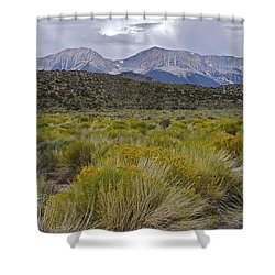 Mono Basin Lee Vining 1 Shower Curtain