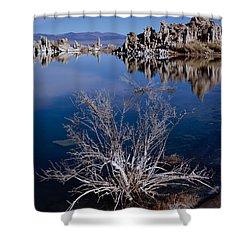Mono Lake Salt Bush Shower Curtain