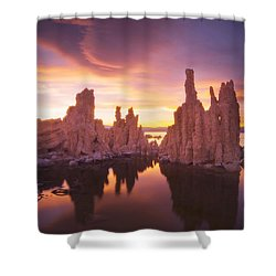 Mono Magic Shower Curtain by Peter Coskun