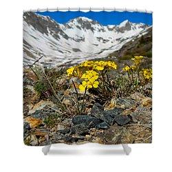 Blue Lakes Colorado Wildflowers Shower Curtain by Dan Miller