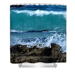 Shower Curtain featuring the photograph Monterey-3 by Dean Ferreira