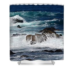 Shower Curtain featuring the photograph Monterey-6 by Dean Ferreira