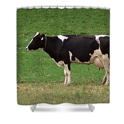 Shower Curtain featuring the photograph Moo by Joseph Skompski