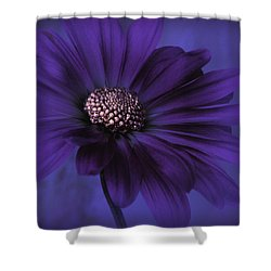Mood Indigo Shower Curtain
