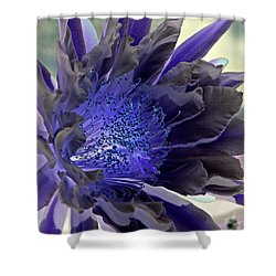Shower Curtain featuring the photograph Moody Blues by Antonia Citrino
