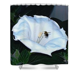Shower Curtain featuring the photograph Moon Flower by Thomas Woolworth