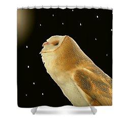 Moon Owl Shower Curtain