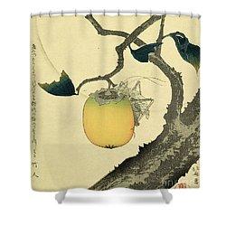 Moon Persimmon And Grasshopper Shower Curtain by Katsushika Hokusai
