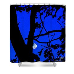 Shower Curtain featuring the photograph Moon Through Trees 2 by Janette Boyd