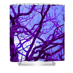 Moon Tree Purple Shower Curtain by First Star Art