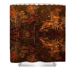 Moonlight Autumn Shower Curtain by Jonathan Steele