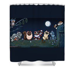 Moonlight On The Wall Shower Curtain