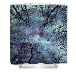 Moonlight Shower Curtain by Stelios Kleanthous