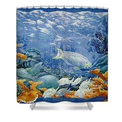 Moonlight Swim Shower Curtain by Deborah Younglao
