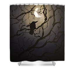Moonlit Perch Shower Curtain