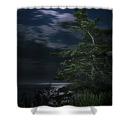 Moonlit Treescape Shower Curtain by Marty Saccone