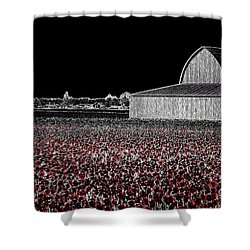 Moonlit Tulips Shower Curtain