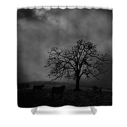 Moonlite Tree On The Farm Shower Curtain by Dan Friend