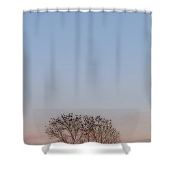 Moonrise Over Blackbirds Shower Curtain by Rob Graham