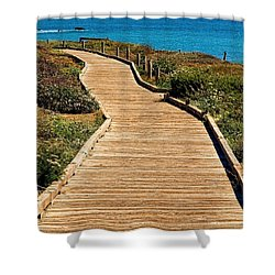 Moonstone Beach Park By Diana Sainz Shower Curtain